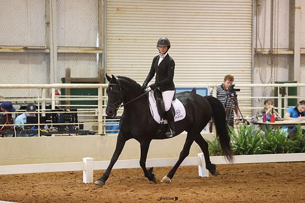 Jessica riding horse